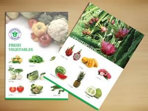 In catalogue giá rẻ, đẹp, nhanh, chất lượng cao tại Hà Nội2