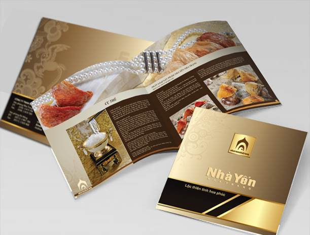 Thiết kế in ấn catalogue chuyên nghiệp với NHÓM IN 2