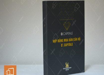 In kẹp file bìa còng giá rẻ và chất lượng tại Hà Nội