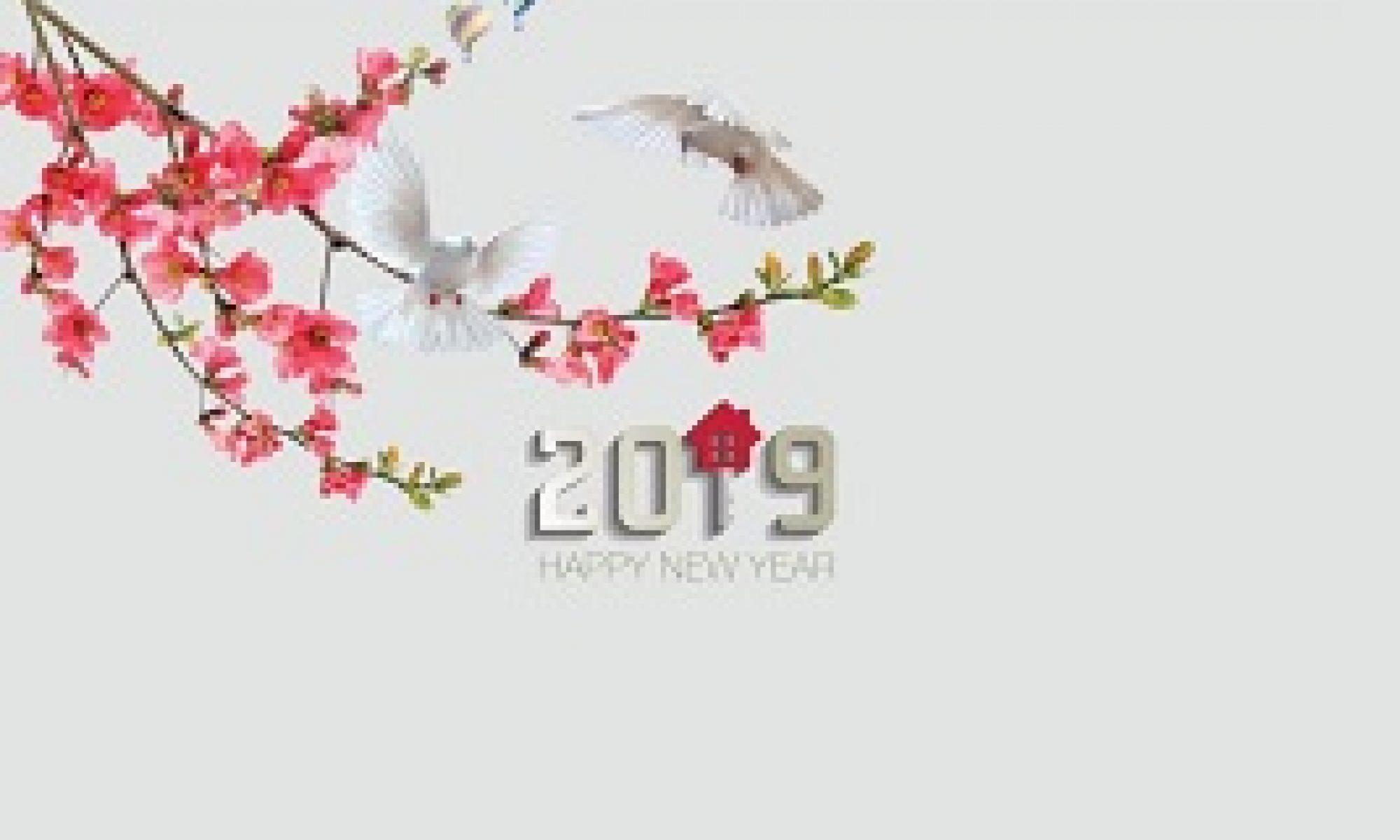 catalogue mẫu lịch phôi sẵn An Hảo 2019
