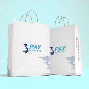 in tui giay dep đơn giản công ty spay Việt Nam