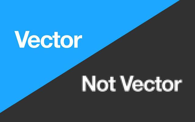 Vector là gì