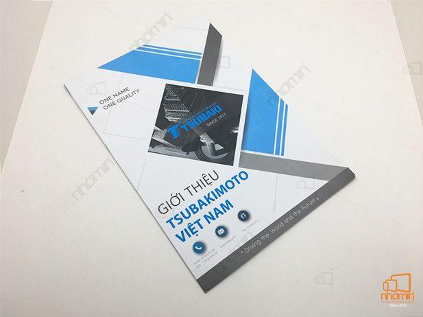 in-catalogue-a4-gioi-thieu-tsubakimoto-VN.jpg