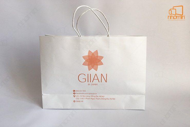 mẫu túi giấy giian